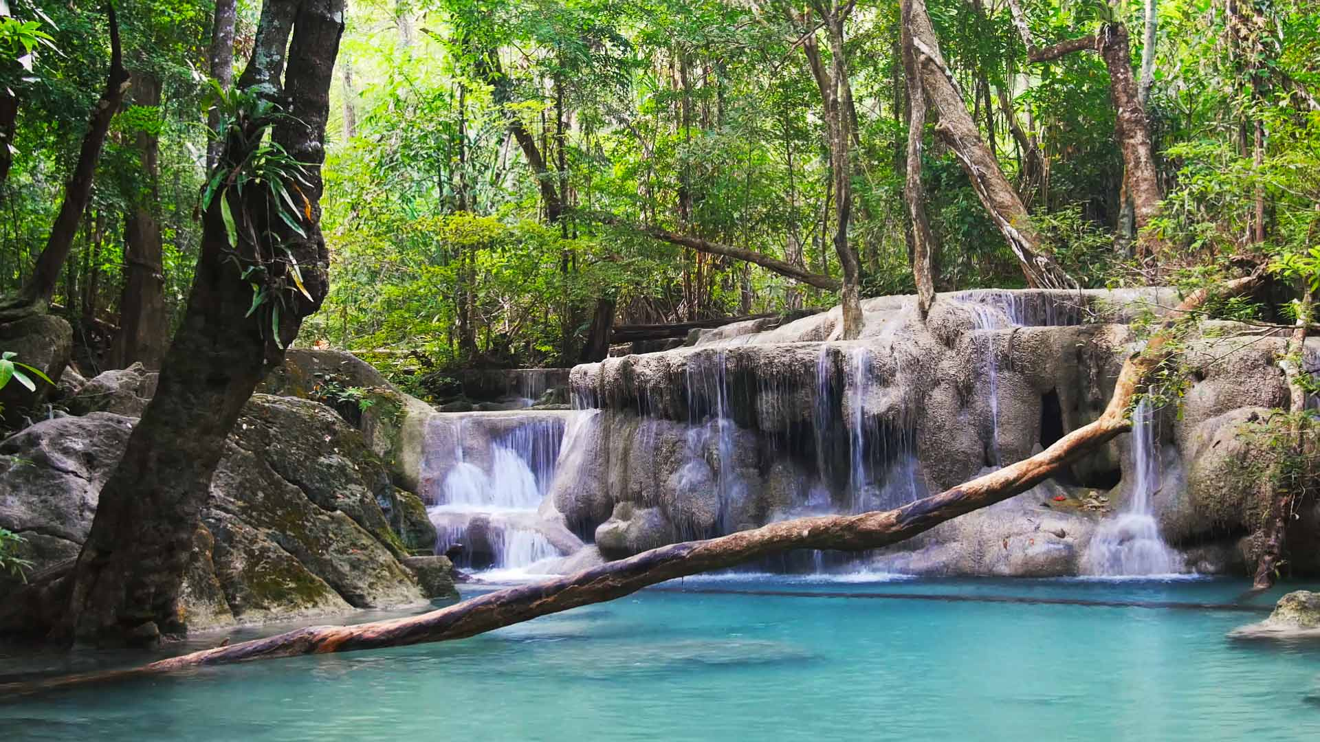 Thailand_Waterfall_FF_768_HD_EN-US1842907882.jpg