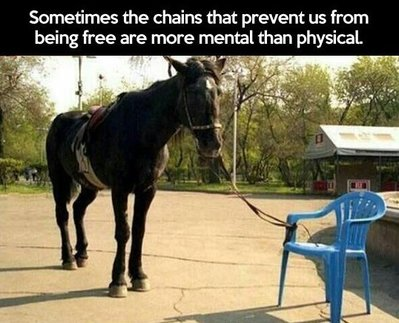 horse-tied-to-plastic-chair-mental-chains.jpg